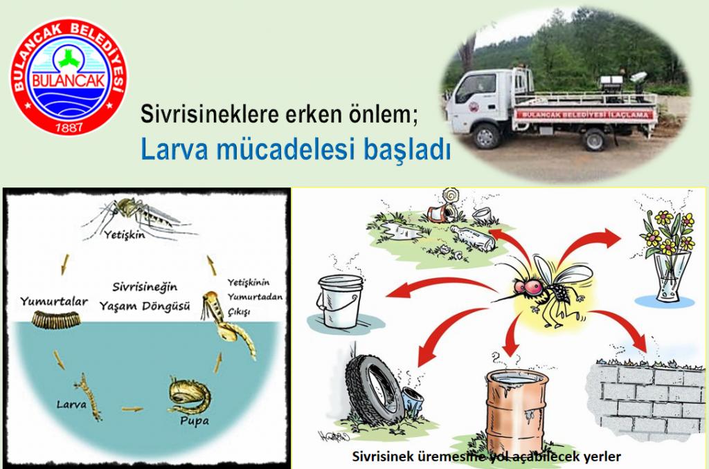 Bulancak'ta Sivrisineklere Erken Önlem; Larva Mücadelesi Başladı