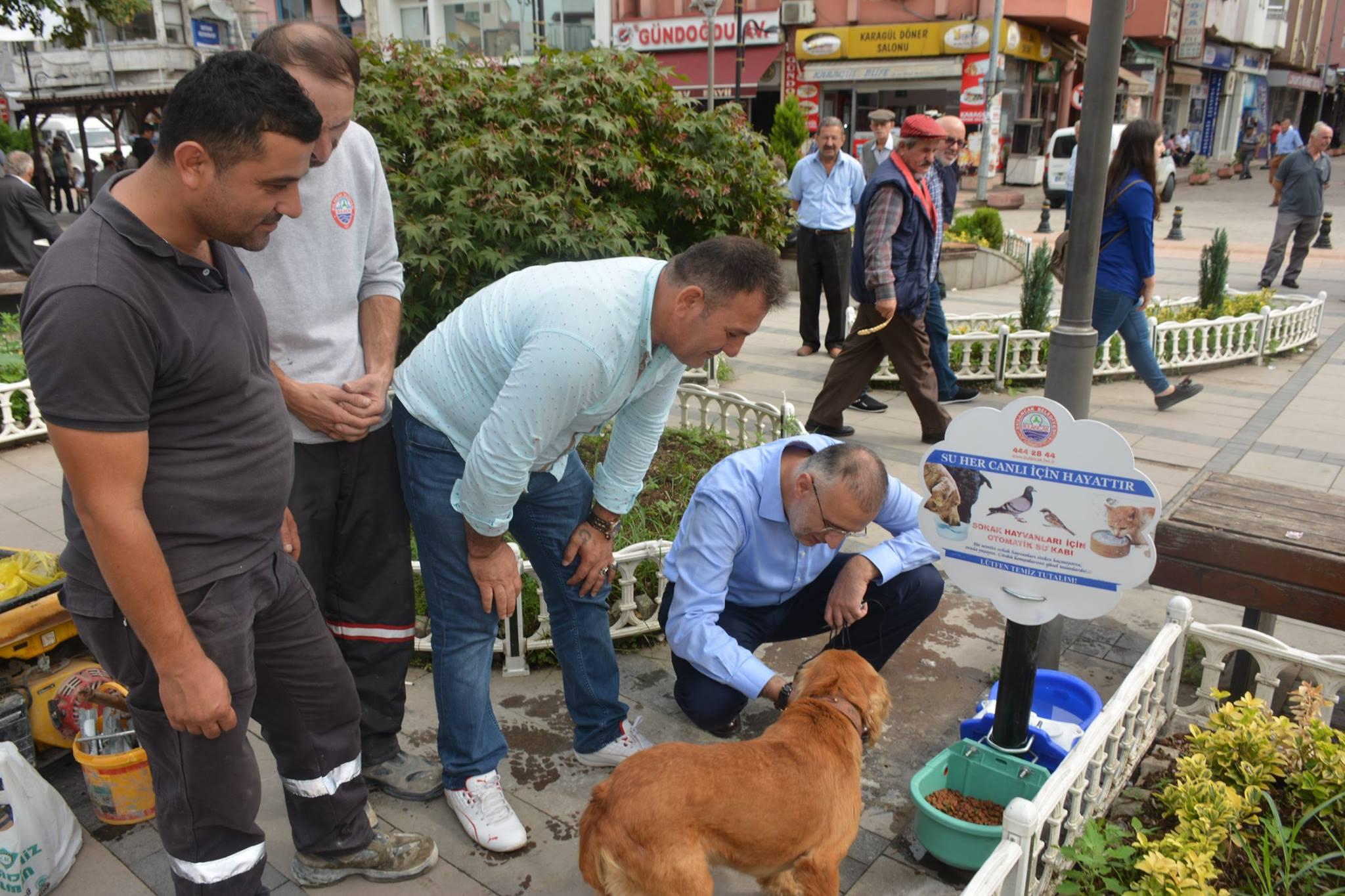 Başkan Yakar'dan Su ve mama istasyonu projesi